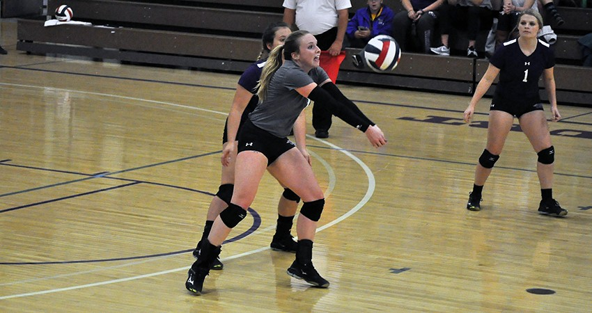 Photo for Waldorf volleyball starts strong but can't fend off Blue Hawks' comeback