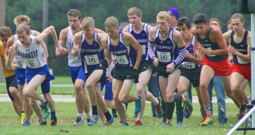 Photo for Warrior runners finish strong against power-packed field at NAIA preview meet